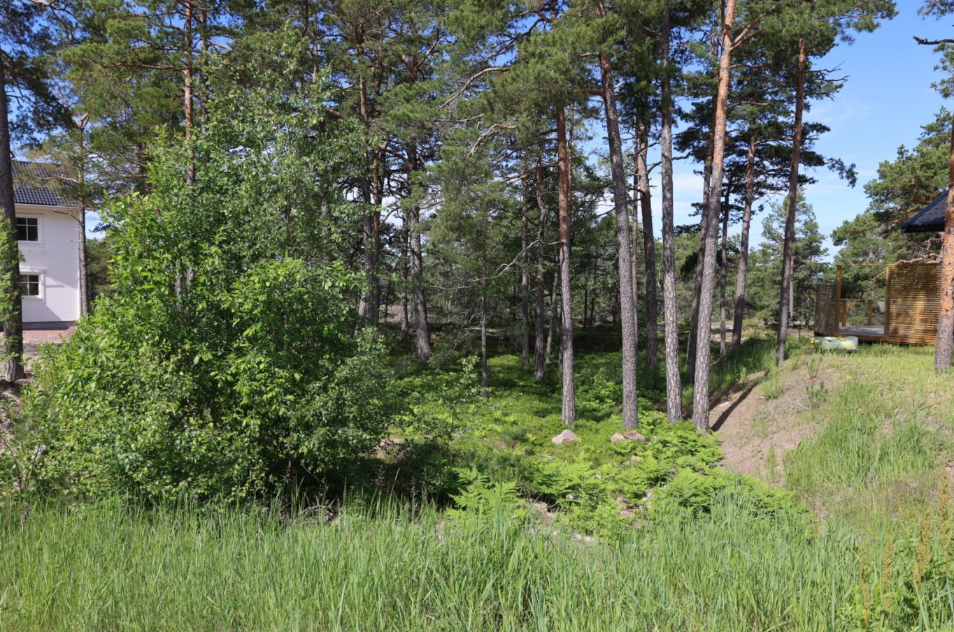 Naturnära tomt vid återvändsgränd vid Fågelberget, Jomala.