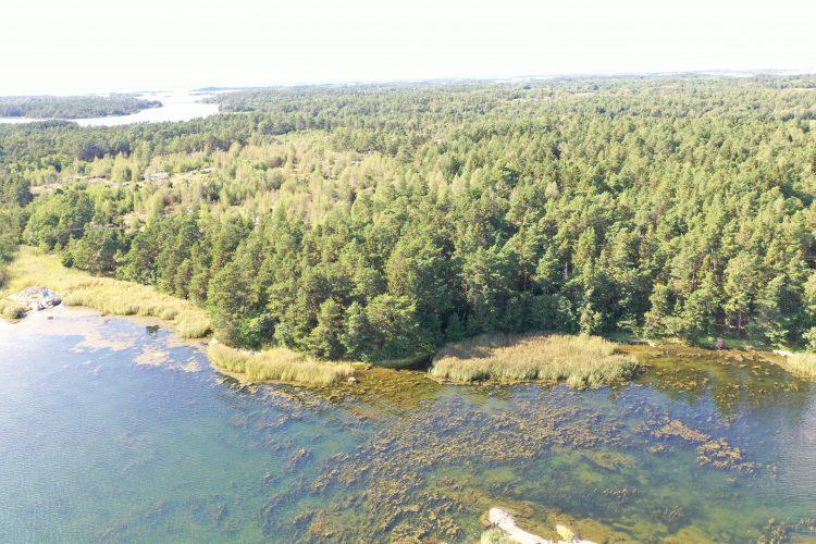 Skogsskifte om ca 26 ha som angränsar mot strand/tillandning i Jyddö, Föglö.